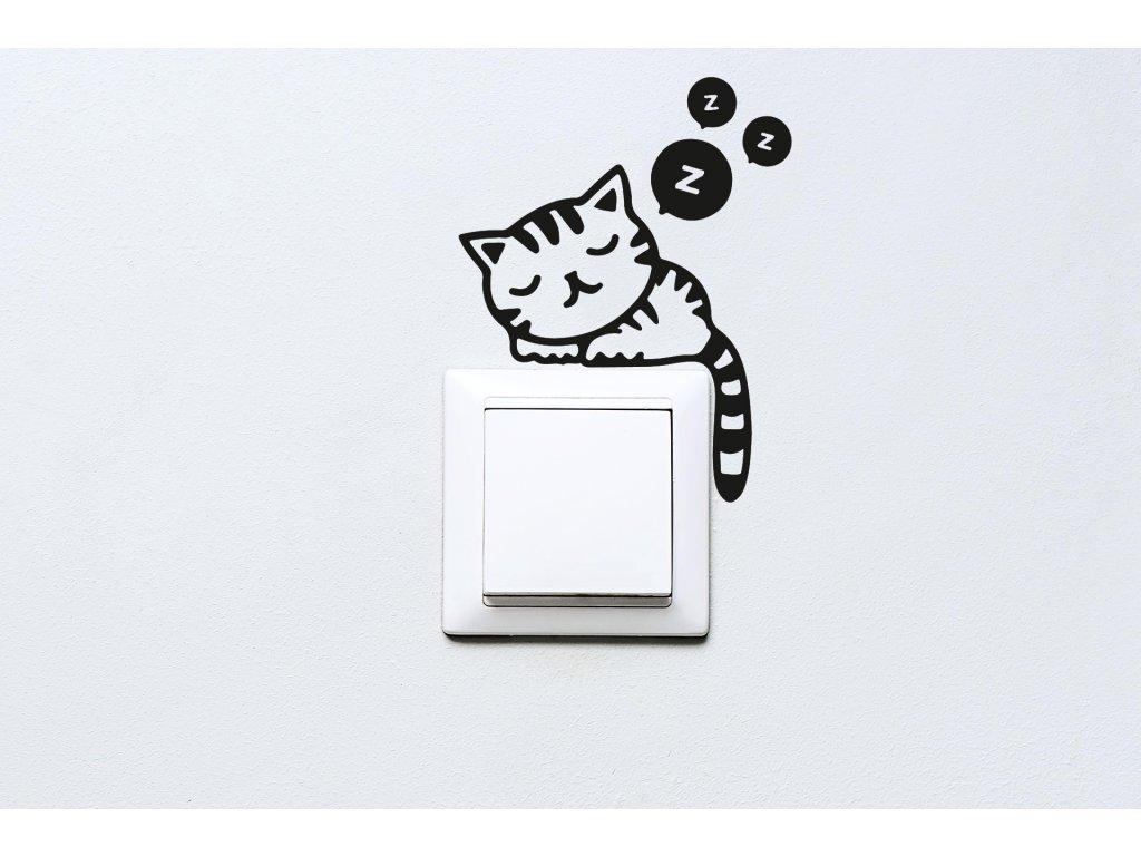 Zdarma pro. Cat, Kočka, Černá, Pet, Mazlíček, Mačka Mainecoon, Spící Kočky, Kočka, Kotě.