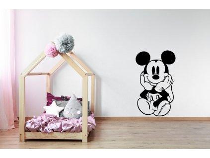 nazed 1051 mickey mouse cerna70 80