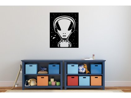 nazed 1144 mimozemstan cerna70 80