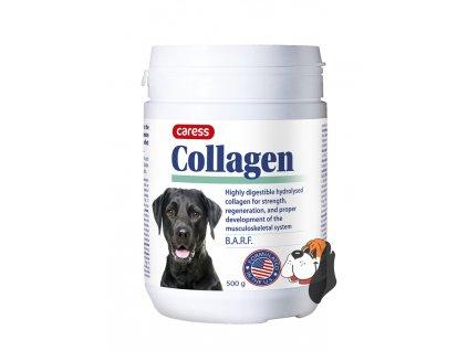 Doplňky výživy a léčiva pro psy