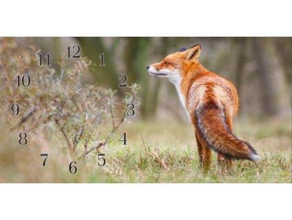 Nástěnné hodiny liška I.30x60