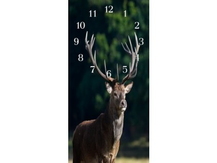 Nástěnné hodiny jelen II.30x60