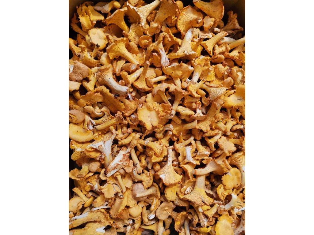 Lišky sušené na kulajdu