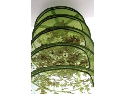 síta na sušení hub 8 pater průměr 55cm(580kč)