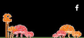 Patička houby
