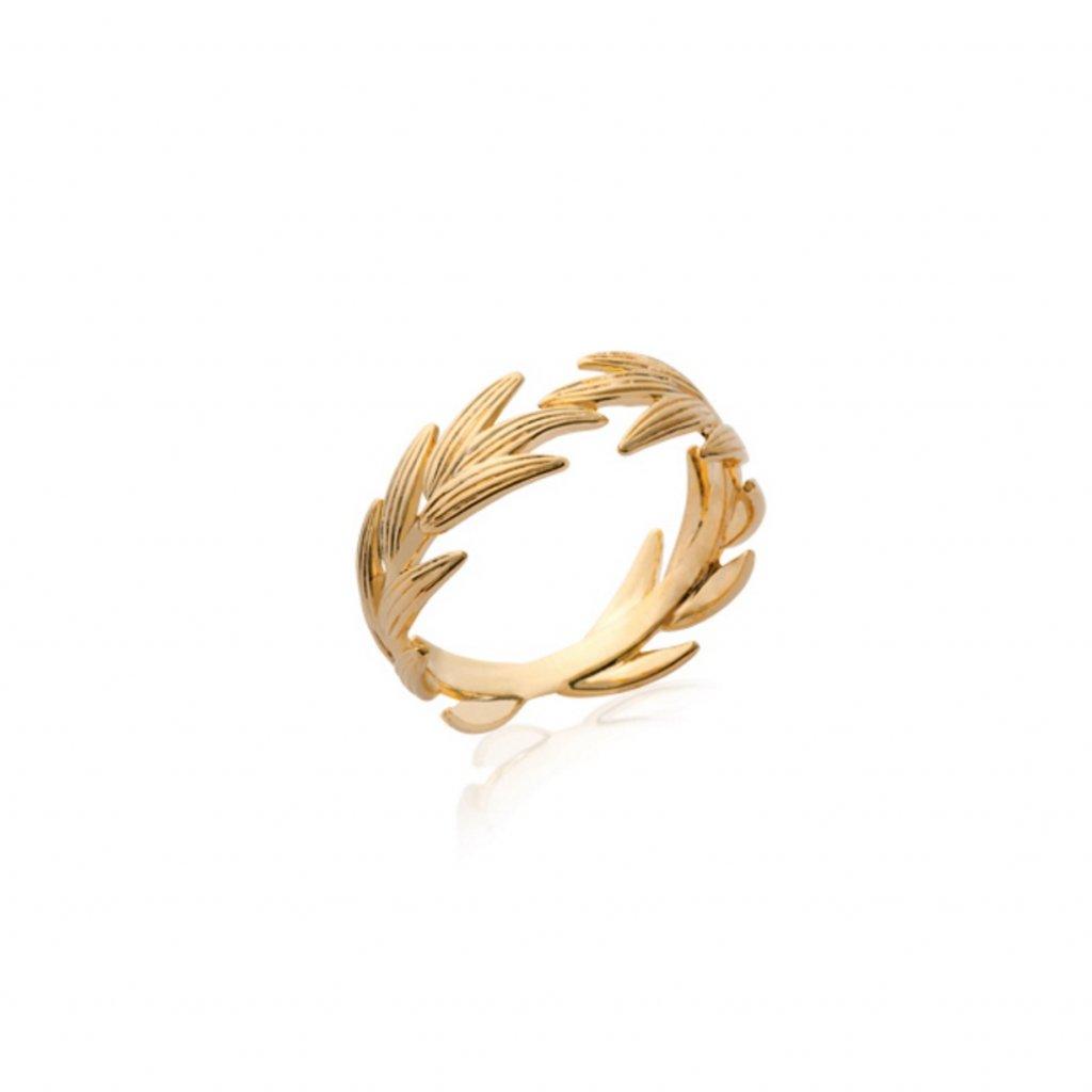 ROMA Ring1