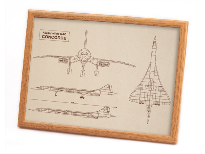 Concorde kuze left