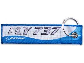 fly 737
