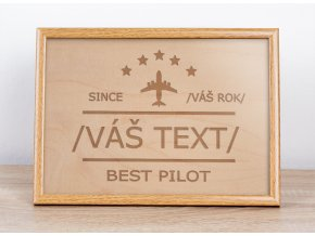 Best pilot obraz