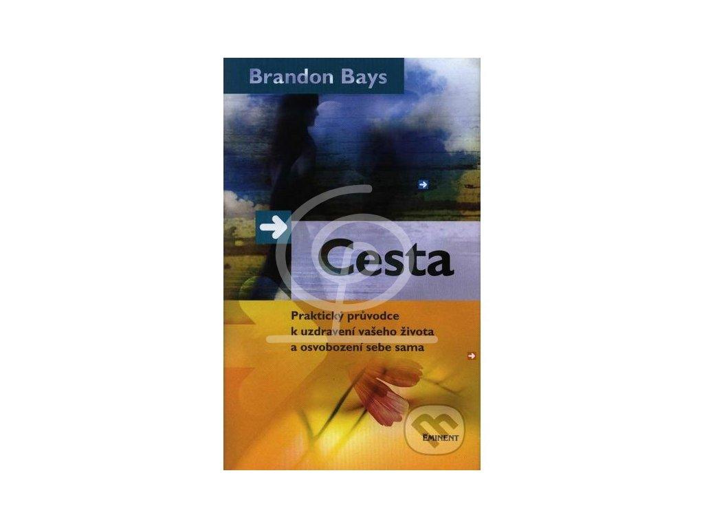 Kniha - Cesta