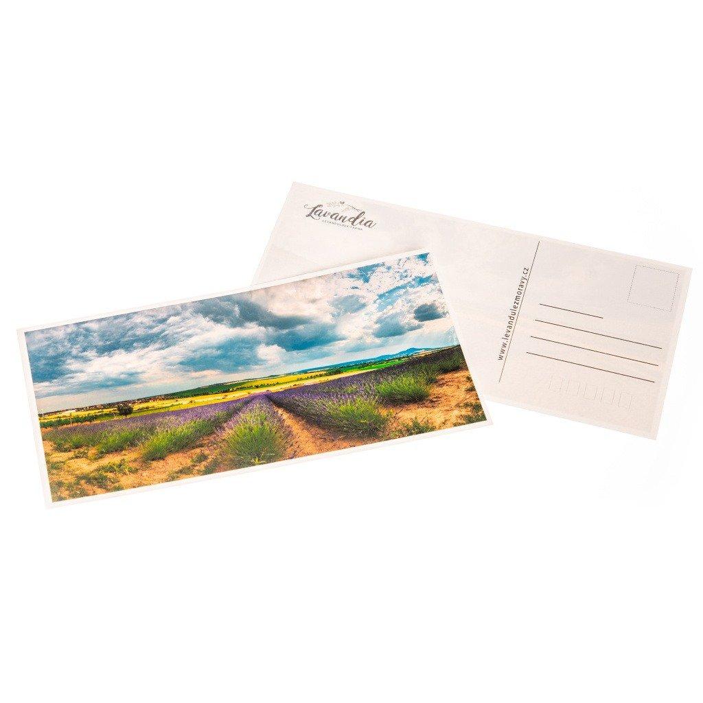 Lavandia pohlednice - Grosso