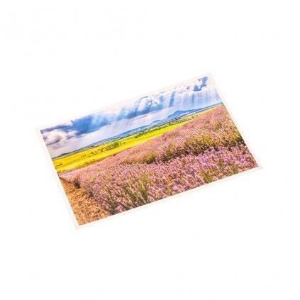 Lavandia pohlednice z levandulového ráje