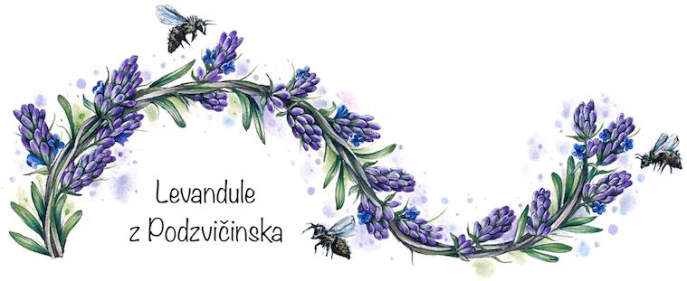 Levandule z Podzvičinska