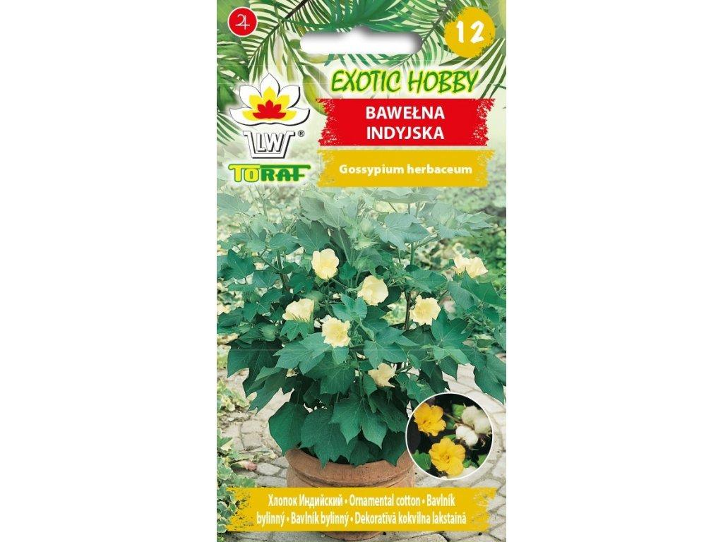 BAVLNÍK INDICKÝ-Gossypium herbaceum/5  SEMEN/