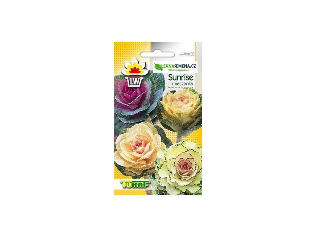 ZELÍ OKRÁSNÉ STONKOVÉ ODRŮDA SUNRISE-Brassica oleacea /10 SEMEN/