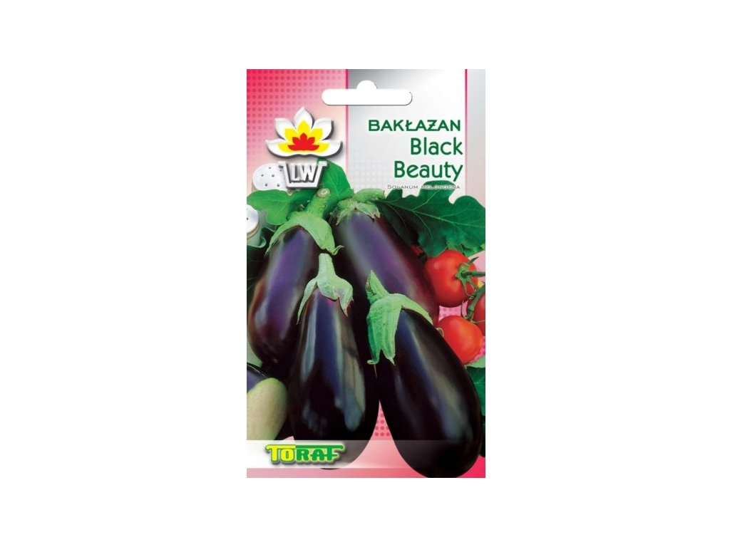 baklazan black beauty 1g
