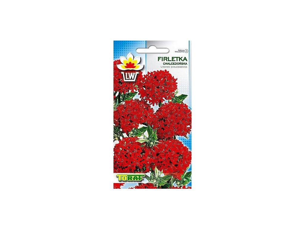 firletka chalcedonska czerwona