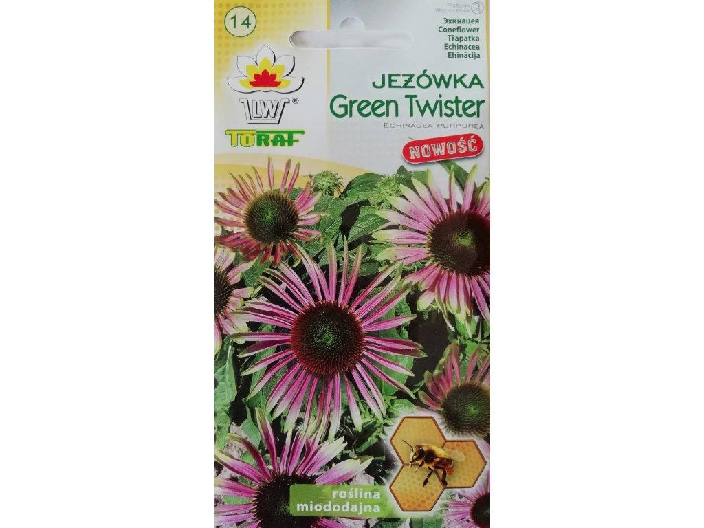 EchinaceaGreenTwister4 levnasemena