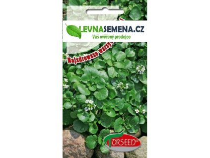 Potočnice lékařská-Nasturtium officinale /400 semen/