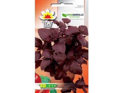 Bazalka červená-Ocimum basilicum  /250 semen/