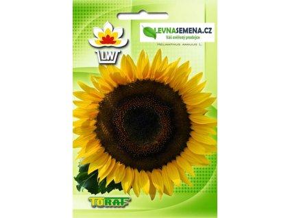 SLUNEČNICE -HELIANTHUS ANNUS L./100 semen/