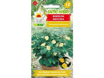 BAVLNÍK INDICKÝ-Gossypium herbaceum/8SEMEN/