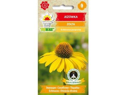 TŘAPATKA ŽLUTÁ-Echinacea paradoxa (syn. Rudbeckia paradoxa)/75 semen/
