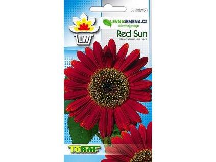 Slunečnice červené slunce-HELIANTHUS ANNUS/cca 65 semen/
