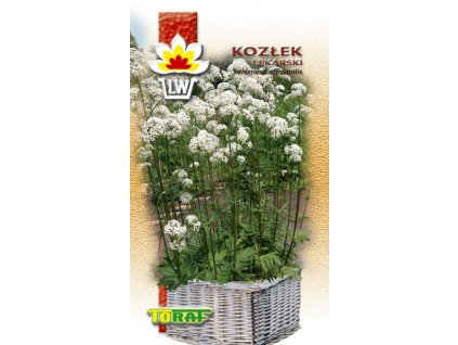 KOZLÍK LÉKAŘSKÝ - Valeriana officinalis 270 SEMEN