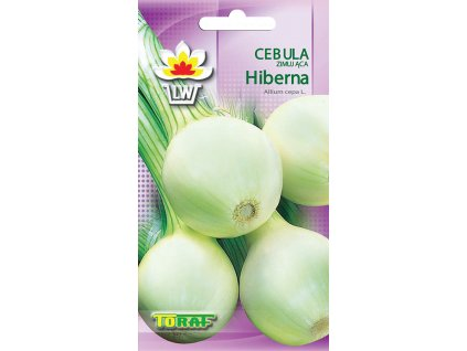 Cibule Hiberna zimující odrůda /500 semen/