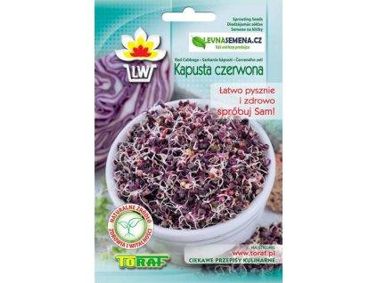 ČERVENÉ ZELÍ SEMENA NA KLÍČKY /10 gramů/