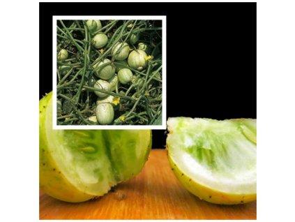 Lemonokurka2