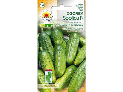 Soplica1