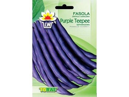 fasola szp fiol karl purple teepee