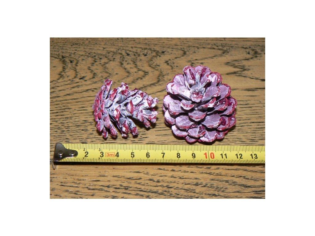 CERINO Šiška borová malá barvená růžová 3-5cm