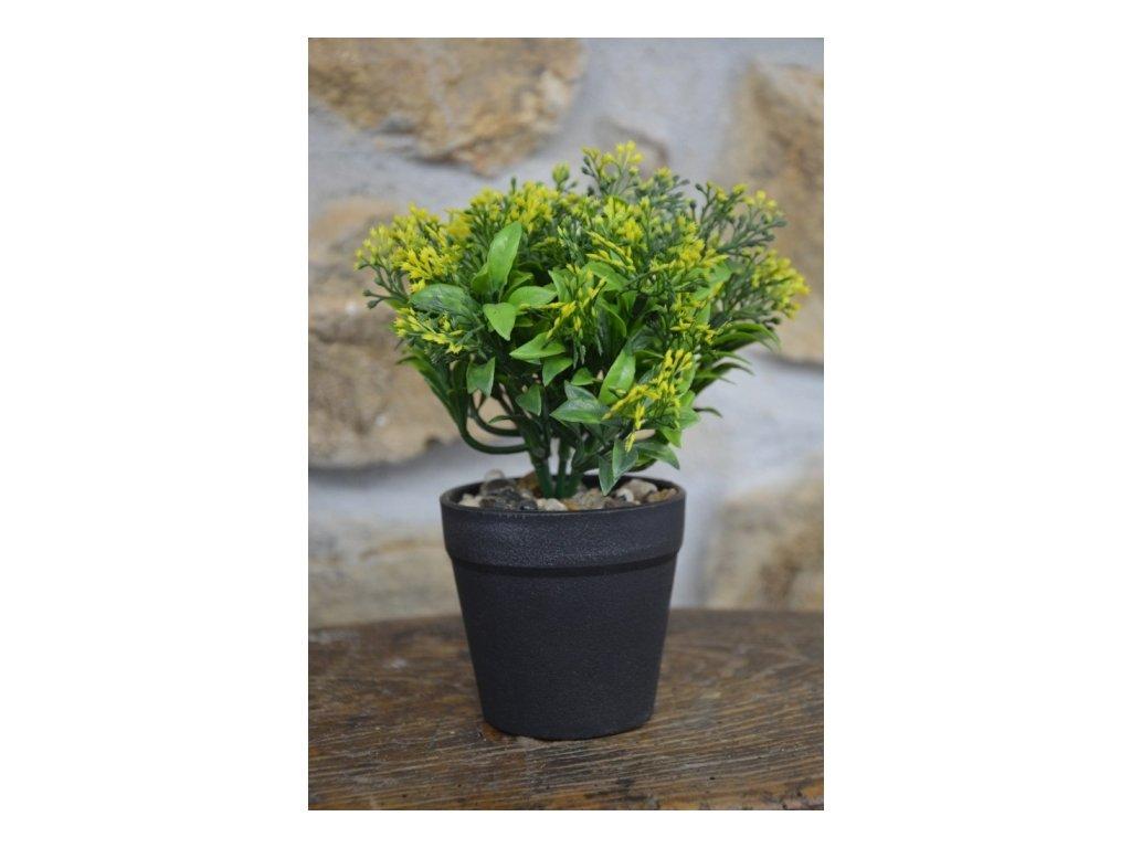 CERINO Umělá kytka v květináči drobné kvítí výška 20cm žluté 1ks