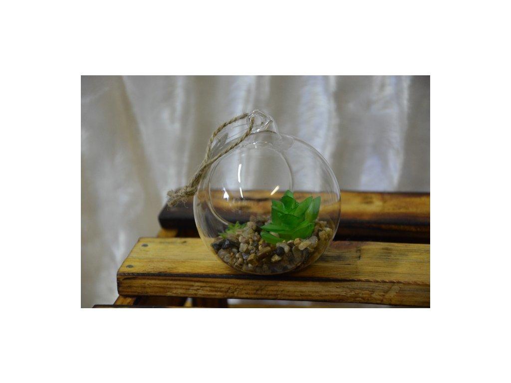 CERINO Skleněná koule se sukulentem 7cm zelený 1ks