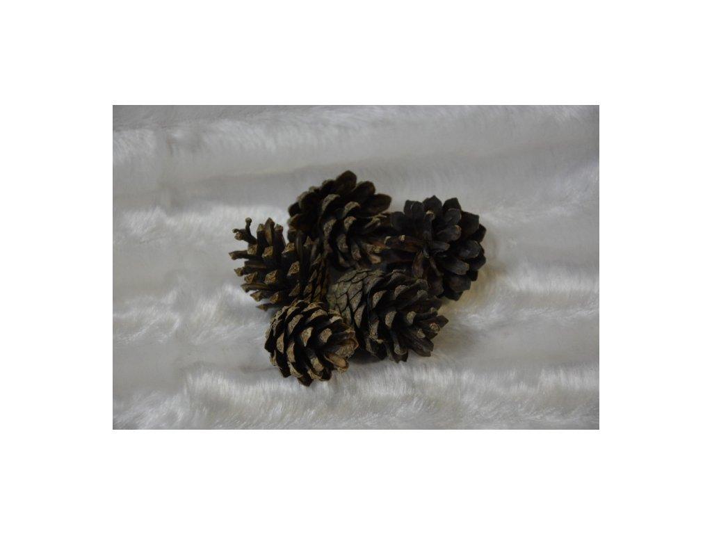 CERINO Šiška borová přírodní balení 5ks (3-6cm)