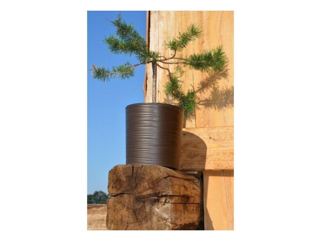 Lamela Květináč plastový Malwa dluto 190, výška 19cm mocca