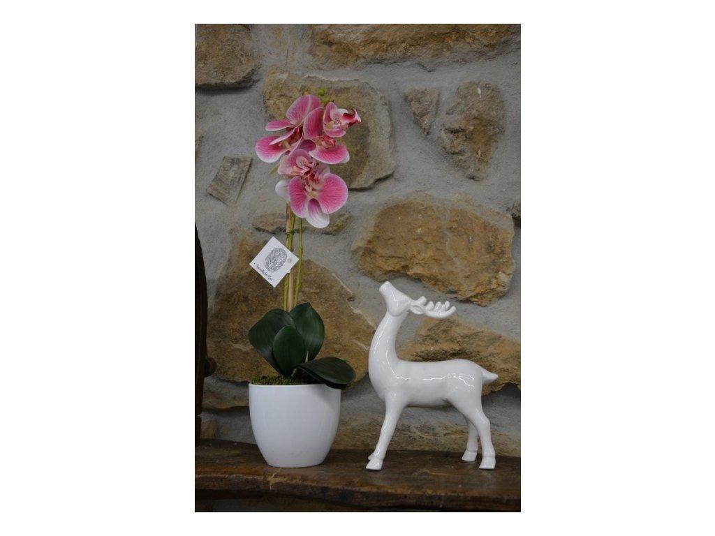 CERINO Umělá květina ORCHIDEI v květináči, 50cm,1ks, růžovobílá