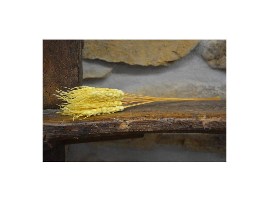 CERINO Umělý klas pšenice na drátku 38cm, přírodní - 1ks klasu