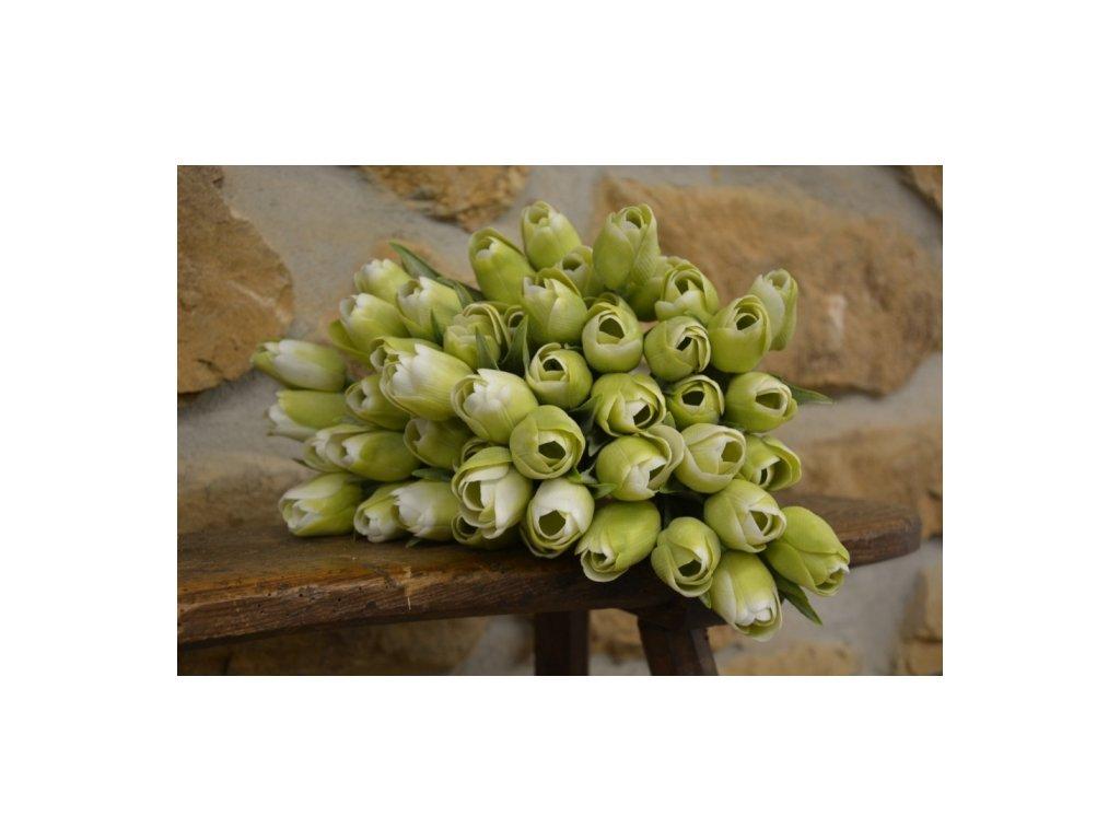 CERINO Umělá květina Tulipán 45cm, voskový, bílozelený 1ks