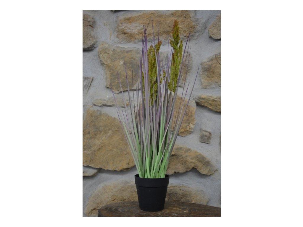 CERINO Umělá květina tráva v květináči výška 53cm zelenofialová