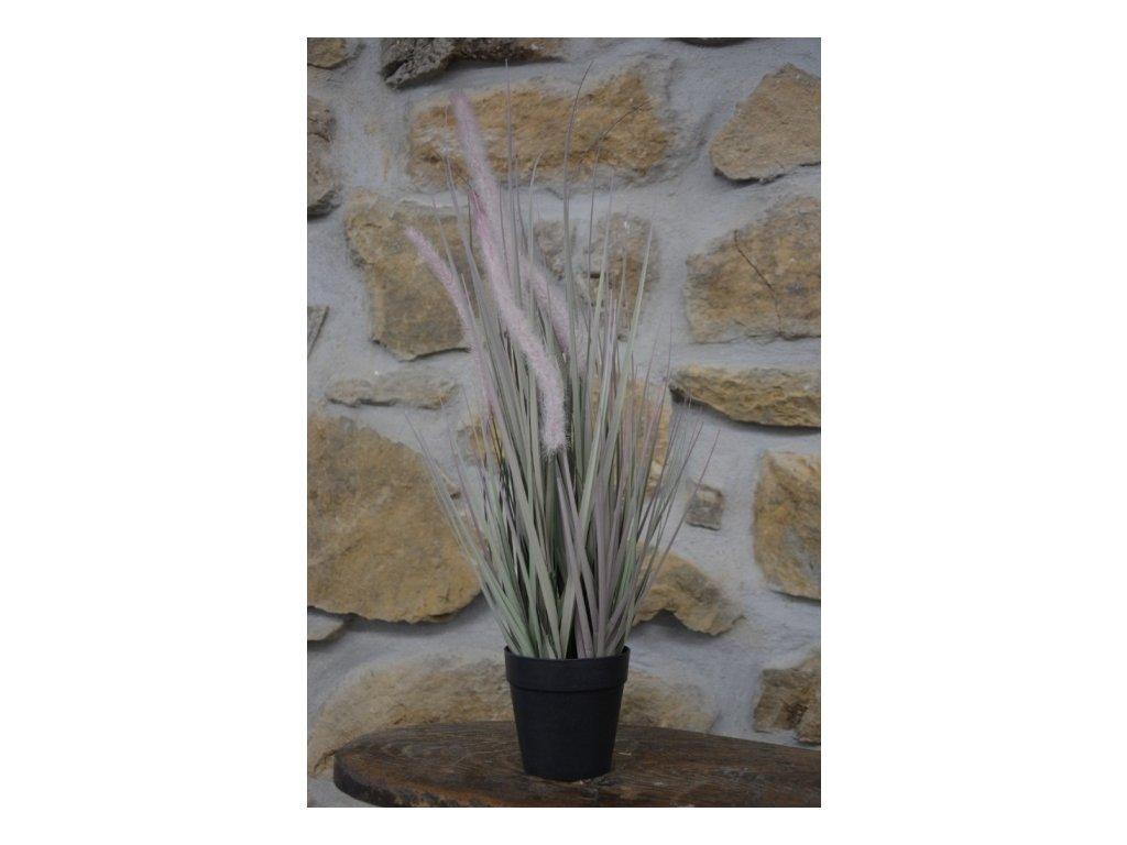 CERINO Umělá květina tráva v květináči výška 52cm růžovozelená