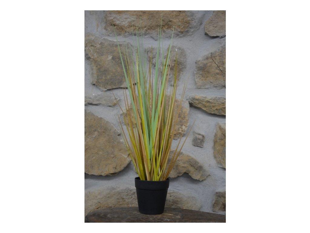 CERINO Umělá květina tráva v květináči výška 50cm žlutozelená