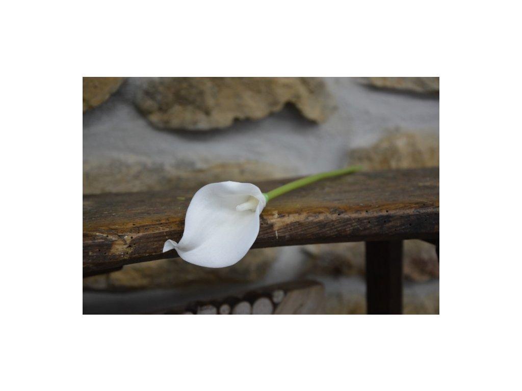 CERINO Umělá květina Kala 37cm bílá