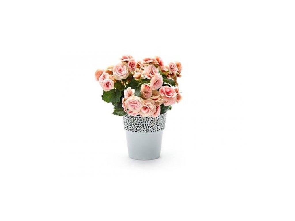 SEMPRO květináč Rosa 115, výška 12cm světle šedá