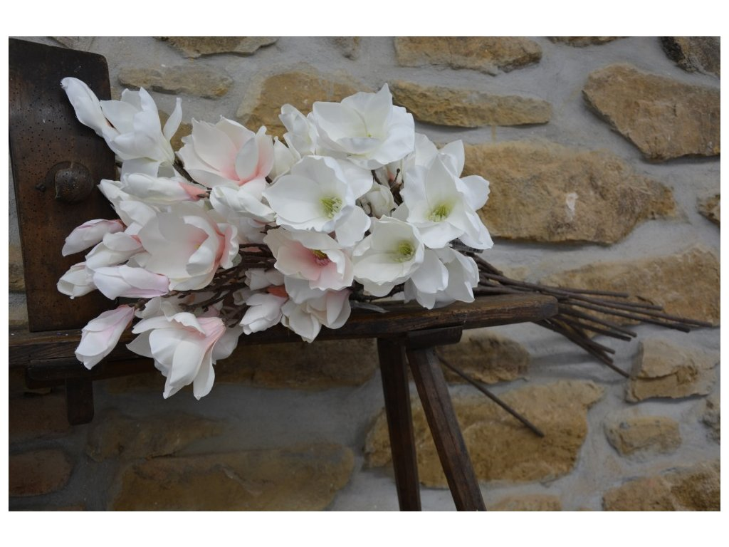 magnolie 120cm