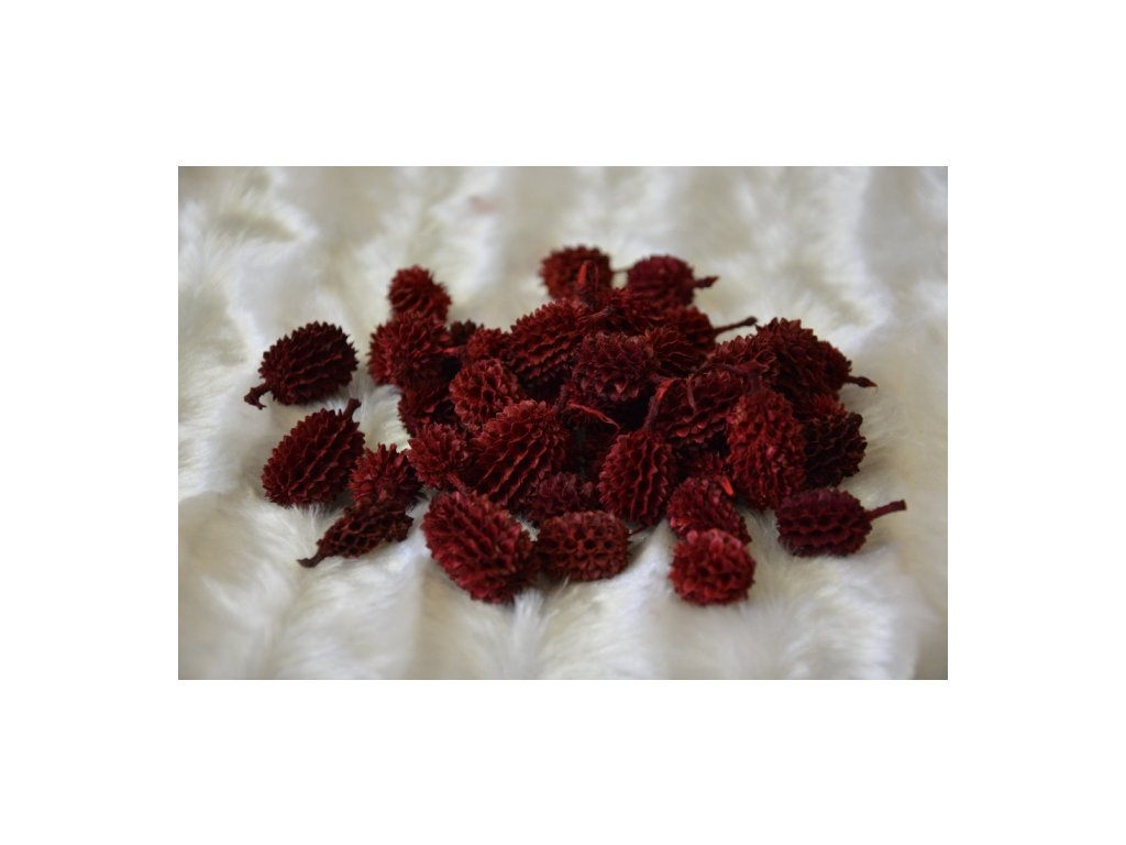 CERINO Přírodní šišky barvené 100g červené