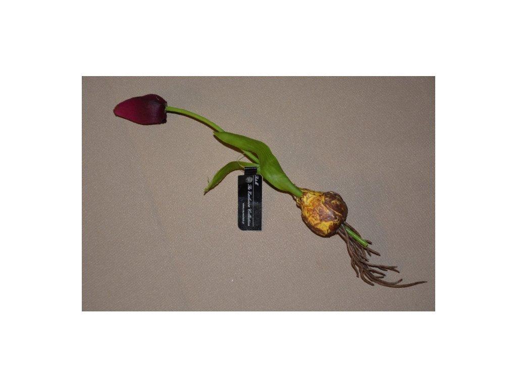 CERINO Umělá květina Tulipán s cibulkou 27cm fialový 1ks